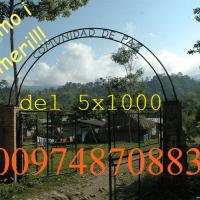 il tuo 5x1000 sostiene un progetto coraggioso e ricco di gioia. Quetzal acquista le fave di cacao della Comunidad de Paz di San Josè de Apartadò, in Colombia, per realizzare l'eccellenza di Modica con un cacao eccezzionale.
