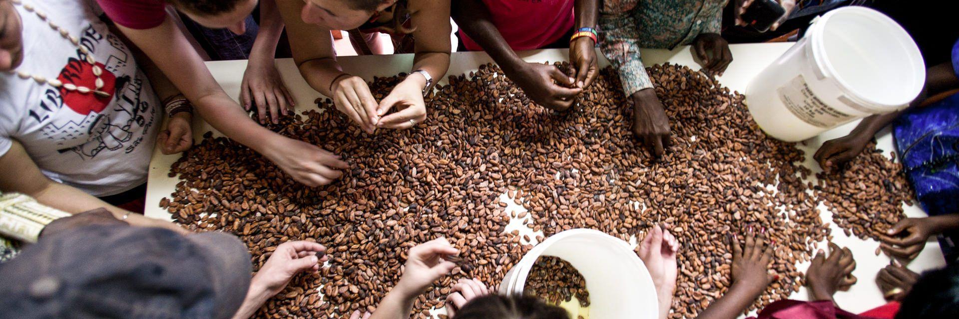 visite guidate al laboratorio di cioccolato